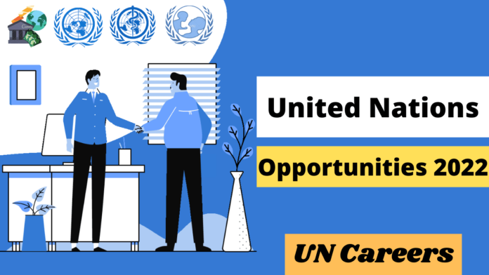 United Nations Opportunities 2022 | UN Careers
