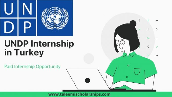 UNDP-Internship-in-Turkey-2021